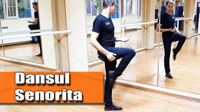 Dansul Senorita / pe muzica