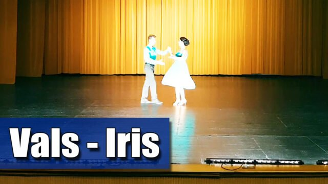 Iris - Vals / adaptare vals vienez pe muzica